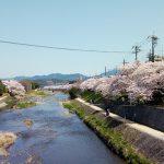 27 Kamogawa River