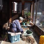 24 Old Woman, Nagano