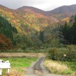 Autumn5 Misato, Saitama
