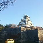 4 Osaka Castel