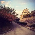 20 Nagoya Castle, Aichi